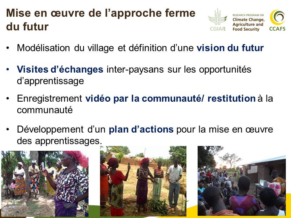 6 Mise en œuvre de lapproche ferme du futur Modélisation du village et définition dune vision du futur Visites déchanges inter-paysans sur les opportu