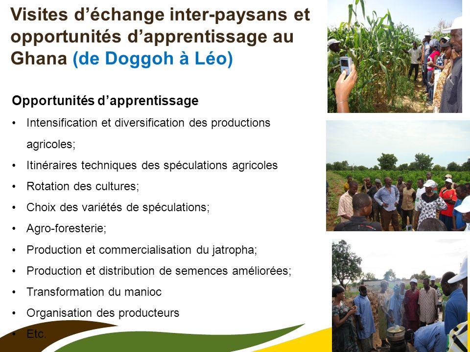 9 Visites déchange inter-paysans et opportunités dapprentissage au Ghana (de Doggoh à Léo) Opportunités dapprentissage Intensification et diversificat