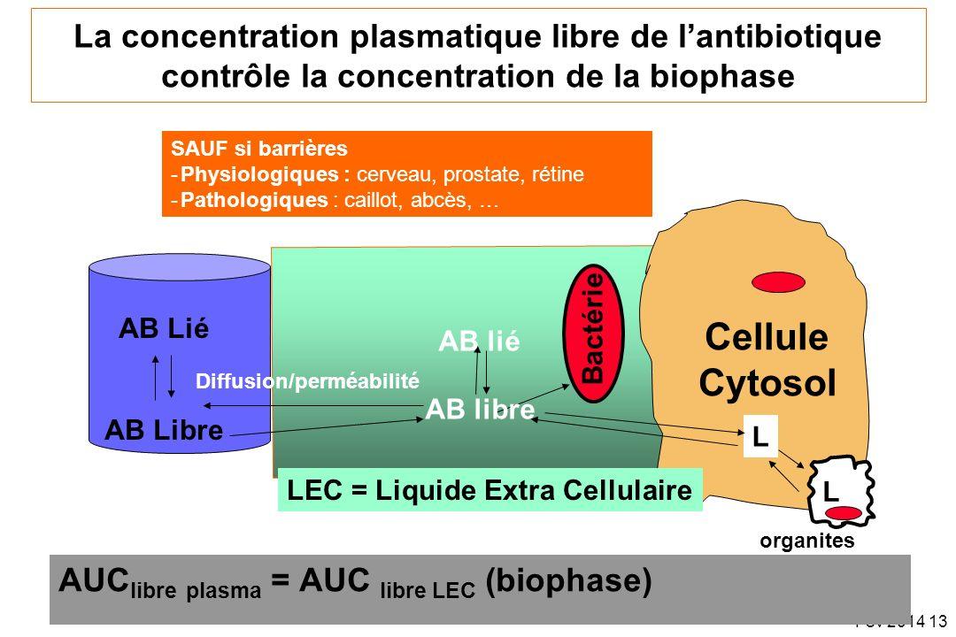 Fev 2014 13 La concentration plasmatique libre de lantibiotique contrôle la concentration de la biophase AUC libre plasma = AUC libre LEC (biophase) A