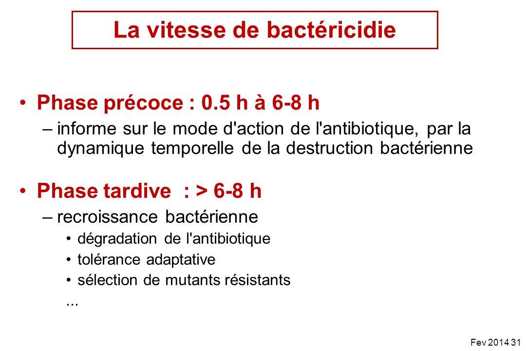 Phase précoce : 0.5 h à 6-8 h –informe sur le mode d'action de l'antibiotique, par la dynamique temporelle de la destruction bactérienne Phase tardive