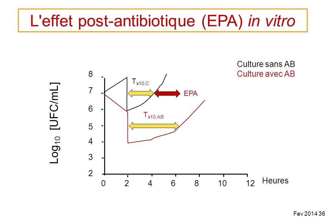 Culture sans AB Culture avec AB 7 6 5 4 3 2 024681012 Heures 8 Log 10 [UFC/mL] T x10,AB T x10,C EPA Fev 2014 36 L'effet post-antibiotique (EPA) in vit