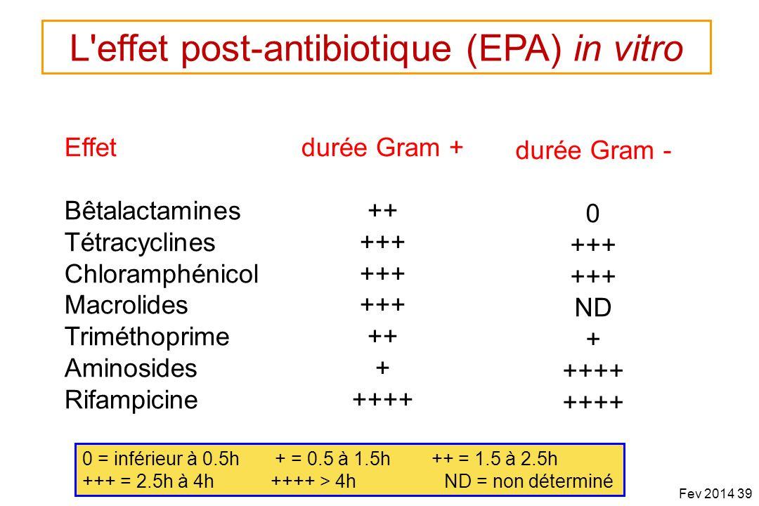 PL Toutain Ecole Vétérinaire Toulouse Effet Bêtalactamines Tétracyclines Chloramphénicol Macrolides Triméthoprime Aminosides Rifampicine durée Gram +