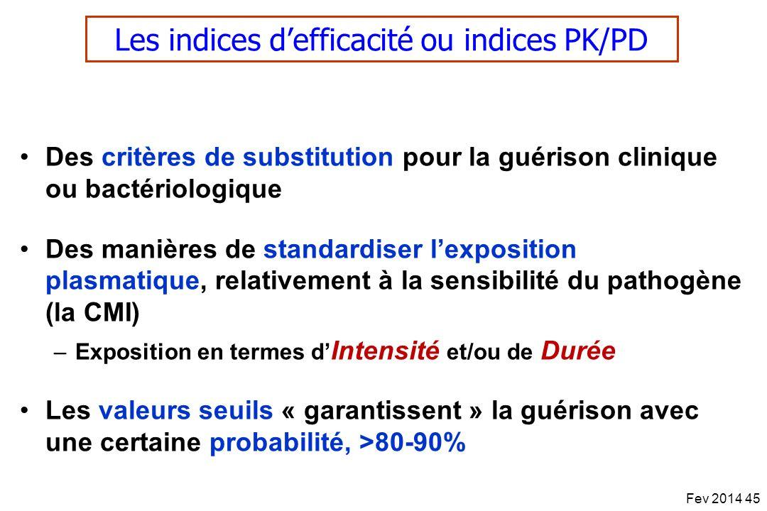 Les indices defficacité ou indices PK/PD Des critères de substitution pour la guérison clinique ou bactériologique Des manières de standardiser lexpos