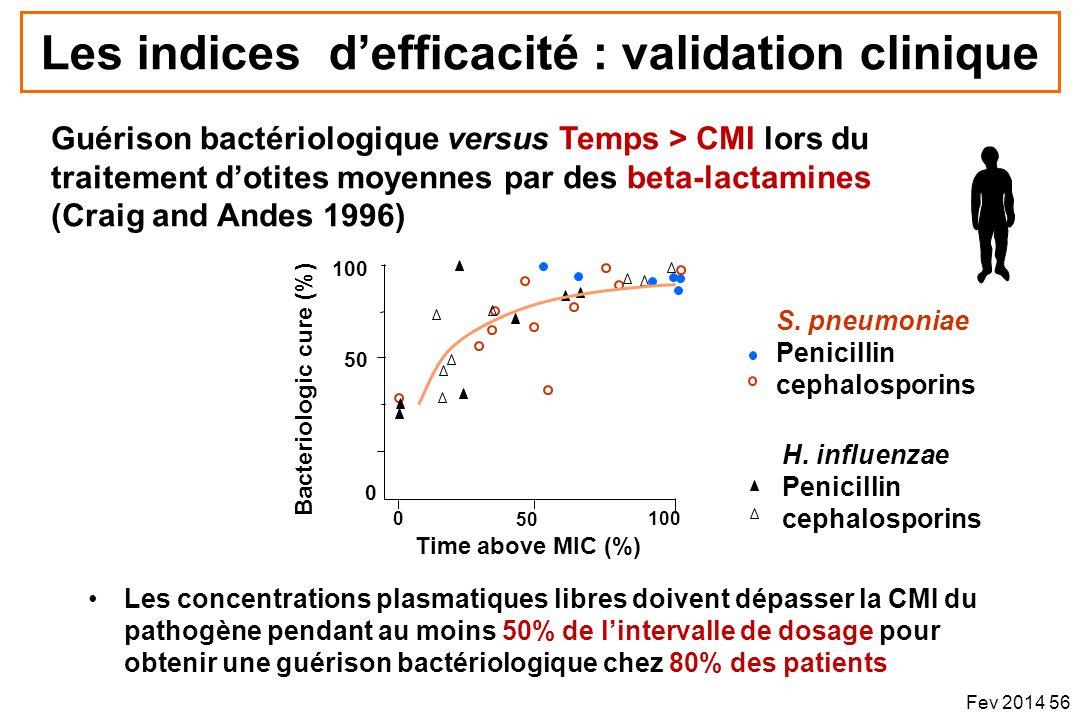 Les indices defficacité : validation clinique Les concentrations plasmatiques libres doivent dépasser la CMI du pathogène pendant au moins 50% de lint
