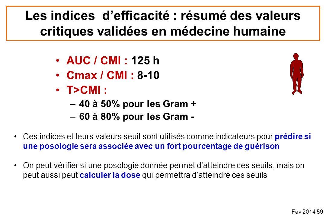 AUC / CMI : 125 h Cmax / CMI : 8-10 T>CMI : –40 à 50% pour les Gram + –60 à 80% pour les Gram - Les indices defficacité : résumé des valeurs critiques