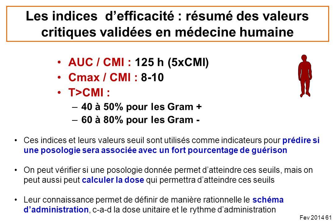 AUC / CMI : 125 h (5xCMI) Cmax / CMI : 8-10 T>CMI : –40 à 50% pour les Gram + –60 à 80% pour les Gram - Les indices defficacité : résumé des valeurs c