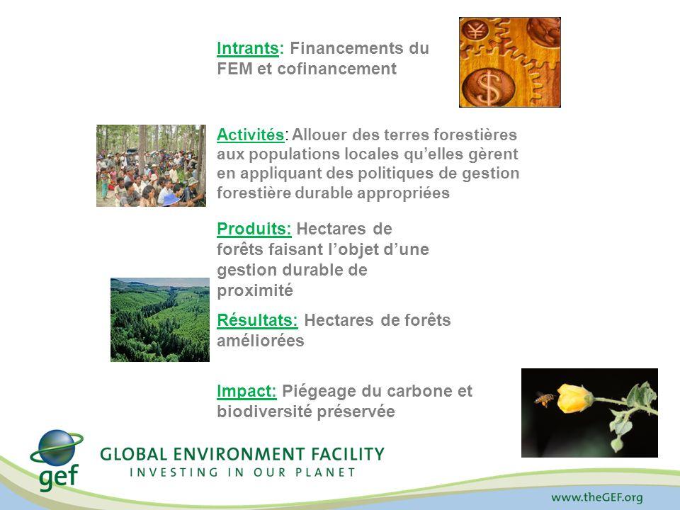 Intrants: Financements du FEM et cofinancement Activités: Allouer des terres forestières aux populations locales quelles gèrent en appliquant des politiques de gestion forestière durable appropriées Produits: Hectares de forêts faisant lobjet dune gestion durable de proximité Résultats: Hectares de forêts améliorées Impact: Piégeage du carbone et biodiversité préservée