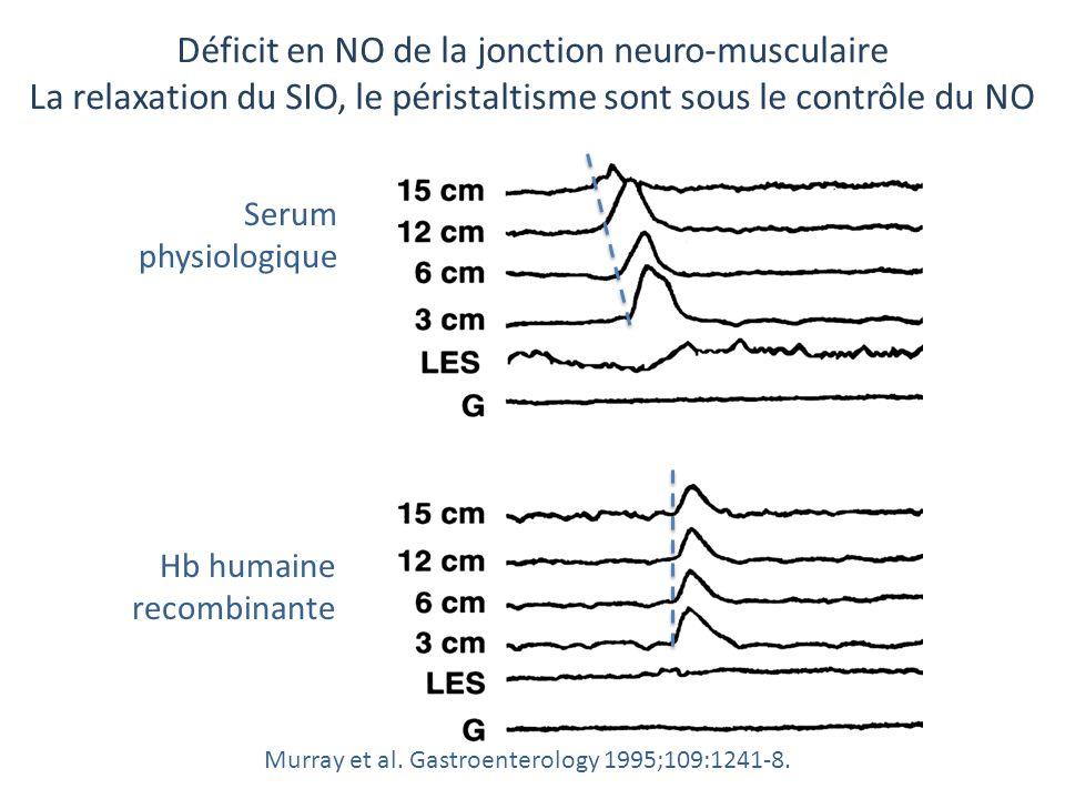 Hb humaine recombinante Murray et al. Gastroenterology 1995;109:1241-8. Déficit en NO de la jonction neuro-musculaire La relaxation du SIO, le pérista