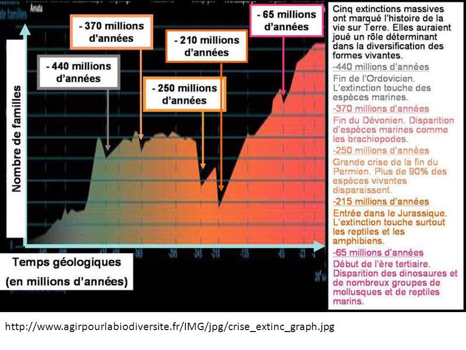 http://www.agirpourlabiodiversite.fr/IMG/jpg/crise_extinc_graph.jpg