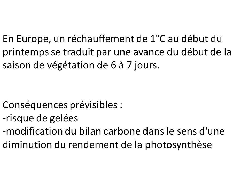 En Europe, un réchauffement de 1°C au début du printemps se traduit par une avance du début de la saison de végétation de 6 à 7 jours. Conséquences pr