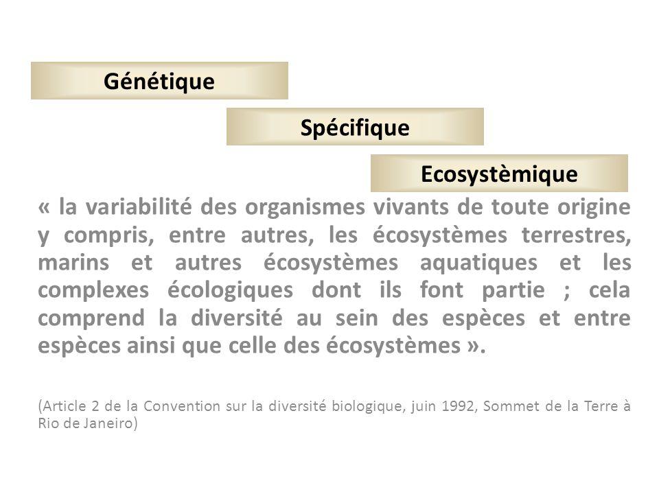 « la variabilité des organismes vivants de toute origine y compris, entre autres, les écosystèmes terrestres, marins et autres écosystèmes aquatiques
