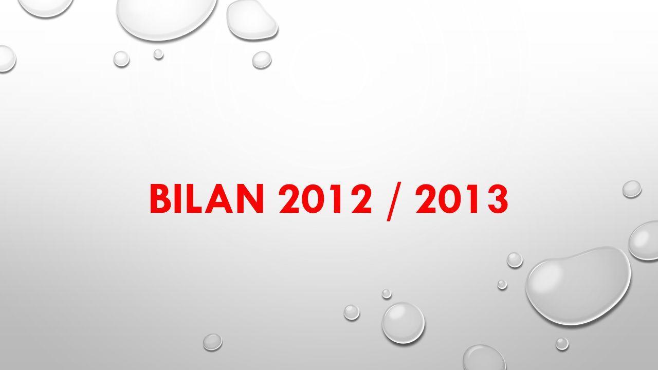BILAN 2012 / 2013