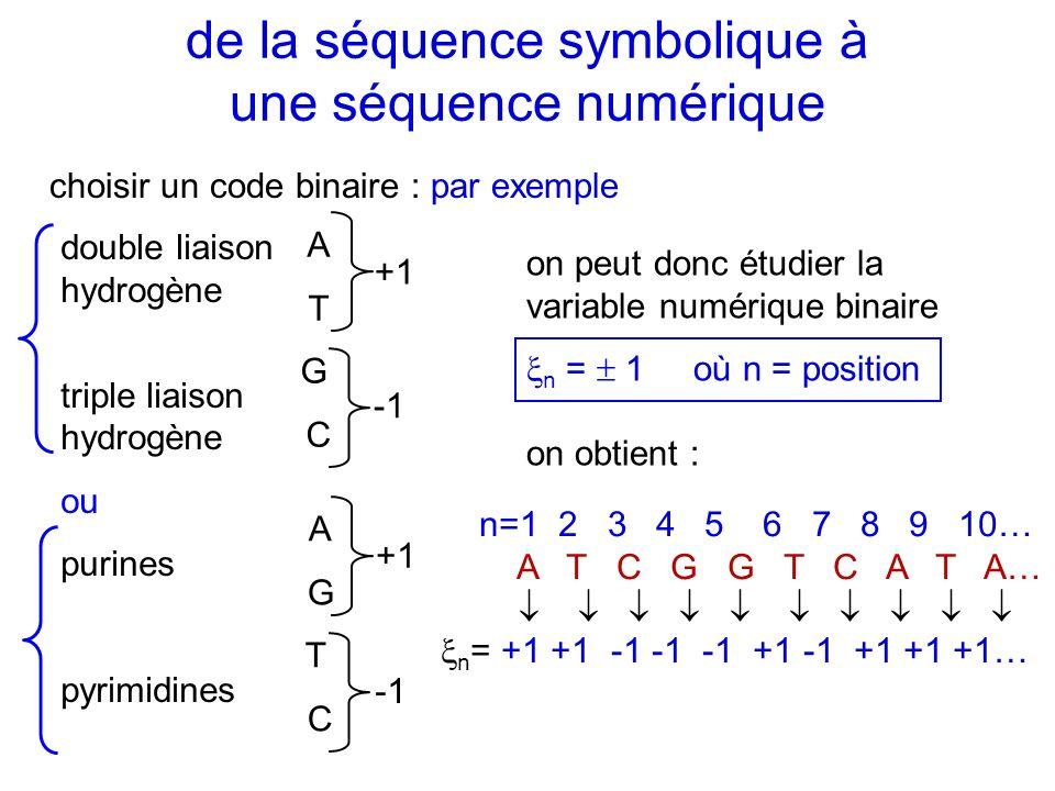 de la séquence symbolique à une séquence numérique choisir un code binaire : par exemple ATGCATGC AGTCAGTC double liaison hydrogène triple liaison hyd
