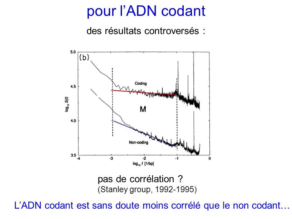 pour lADN codant des résultats controversés : pas de corrélation ? (Stanley group, 1992-1995) LADN codant est sans doute moins corrélé que le non coda