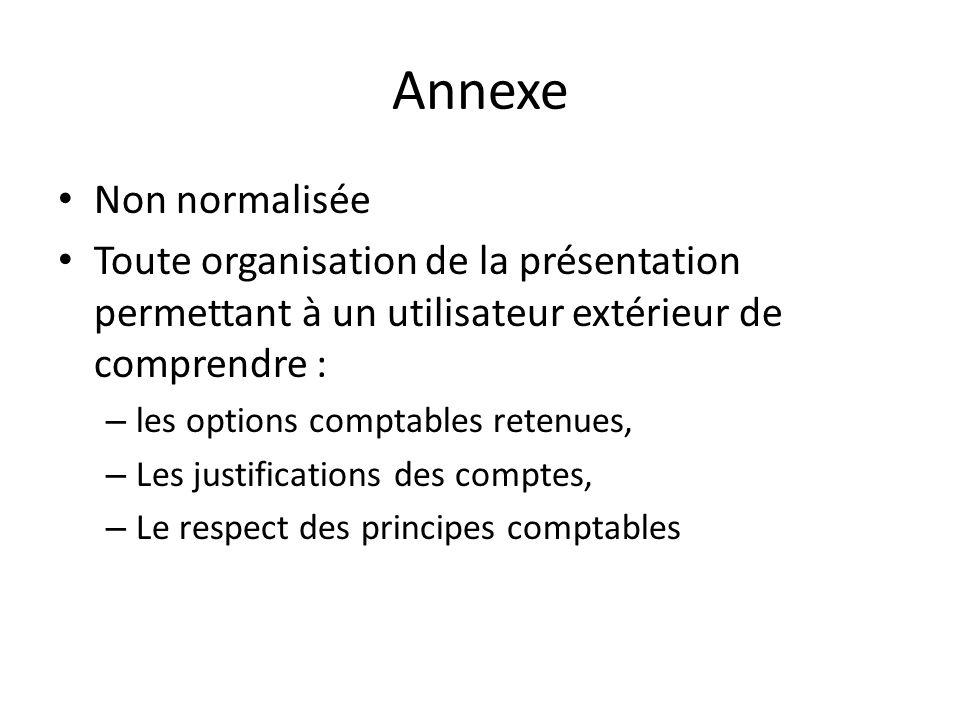 Annexe Non normalisée Toute organisation de la présentation permettant à un utilisateur extérieur de comprendre : – les options comptables retenues, –