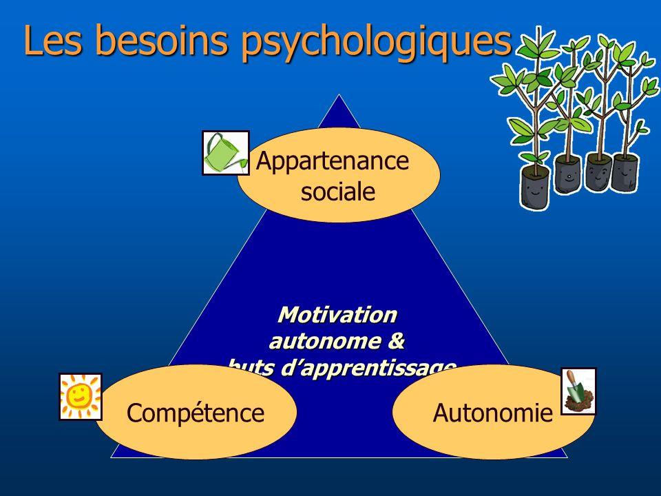 Les besoins psychologiques Motivation autonome & buts dapprentissage Autonomie Compétence Appartenance sociale
