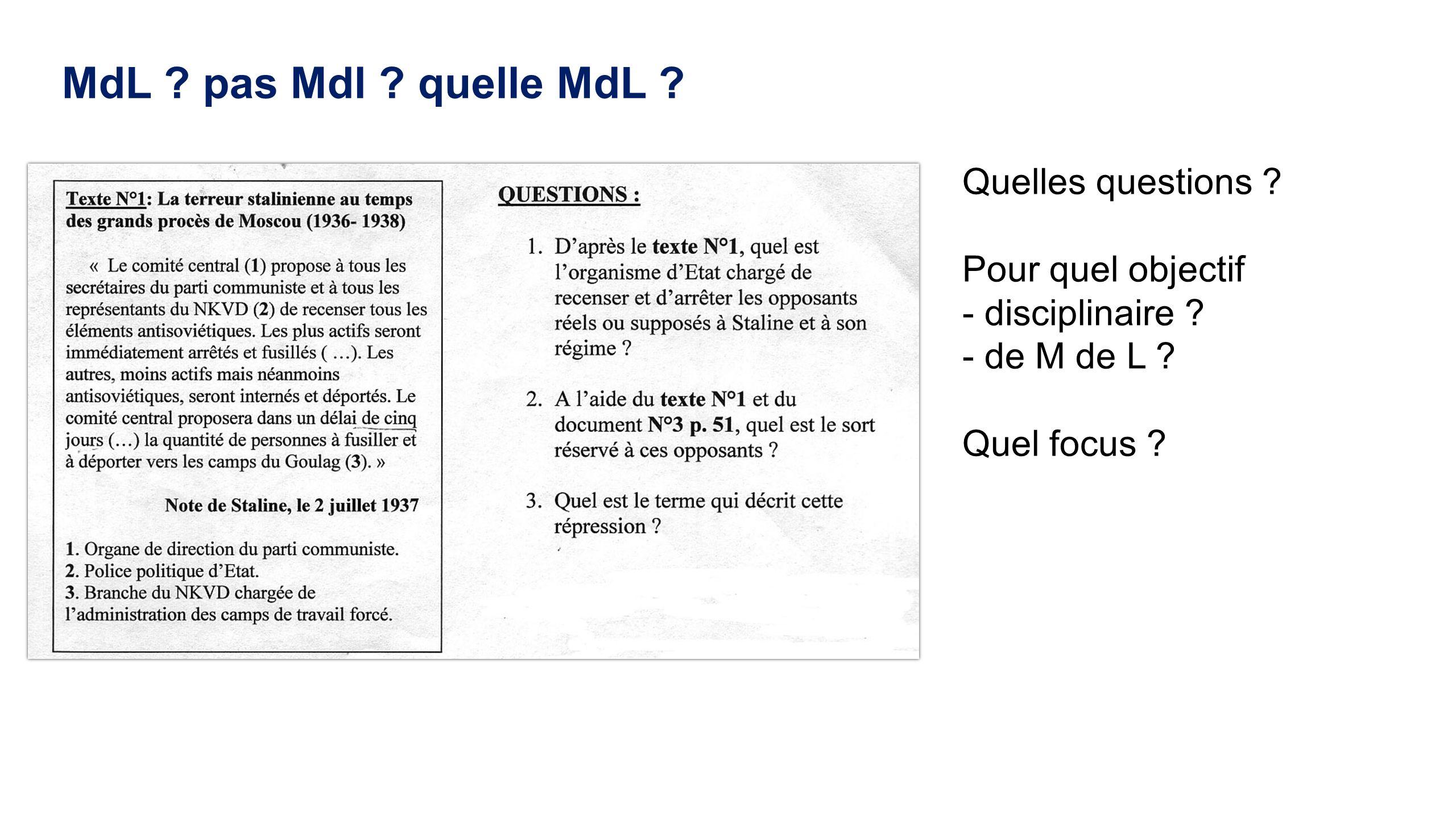 MdL ? pas Mdl ? quelle MdL ? Quelles questions ? Pour quel objectif - disciplinaire ? - de M de L ? Quel focus ?