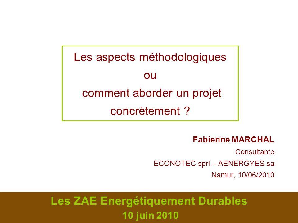 2 2 Les ZAE Energétiquement Durables – 10 juin 2010 Les aspects méthodologiques Systématiser lapproche de lénergie dans les ZAE Critères de choix Freins, écueils et financement Intérêt dune validation indépendante