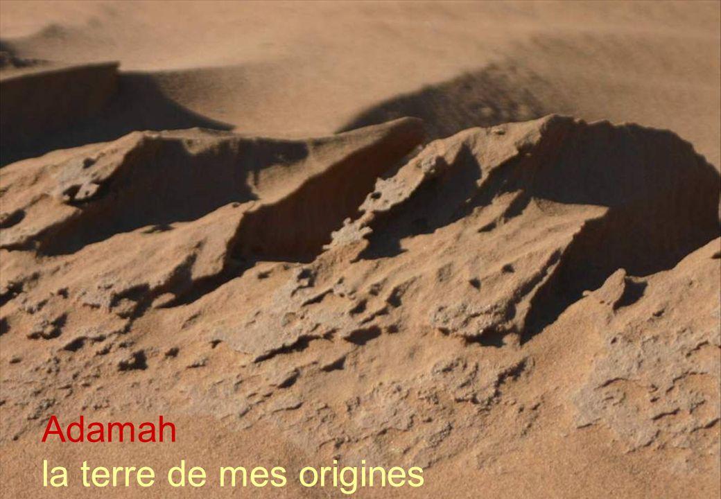 1 Adamah la terre de mes origines