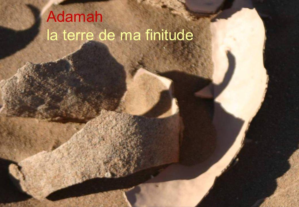 3 Adamah la terre de mes peines et de mes espoirs