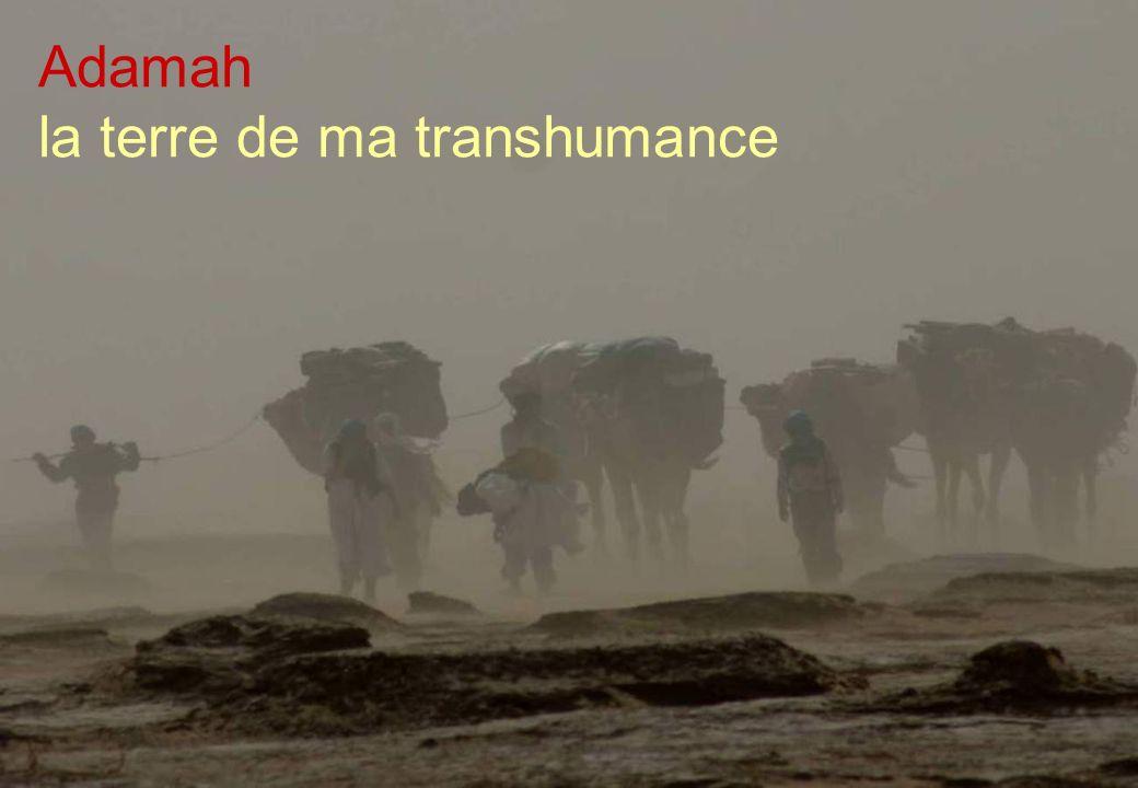 4 Adamah la terre de ma transhumance