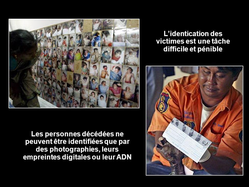 Lidentication des victimes est une tâche difficile et pénible Les personnes décédées ne peuvent être identifiées que par des photographies, leurs empr