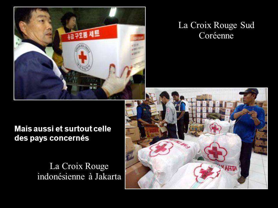La Croix Rouge indonésienne à Jakarta La Croix Rouge Sud Coréenne Mais aussi et surtout celle des pays concernés