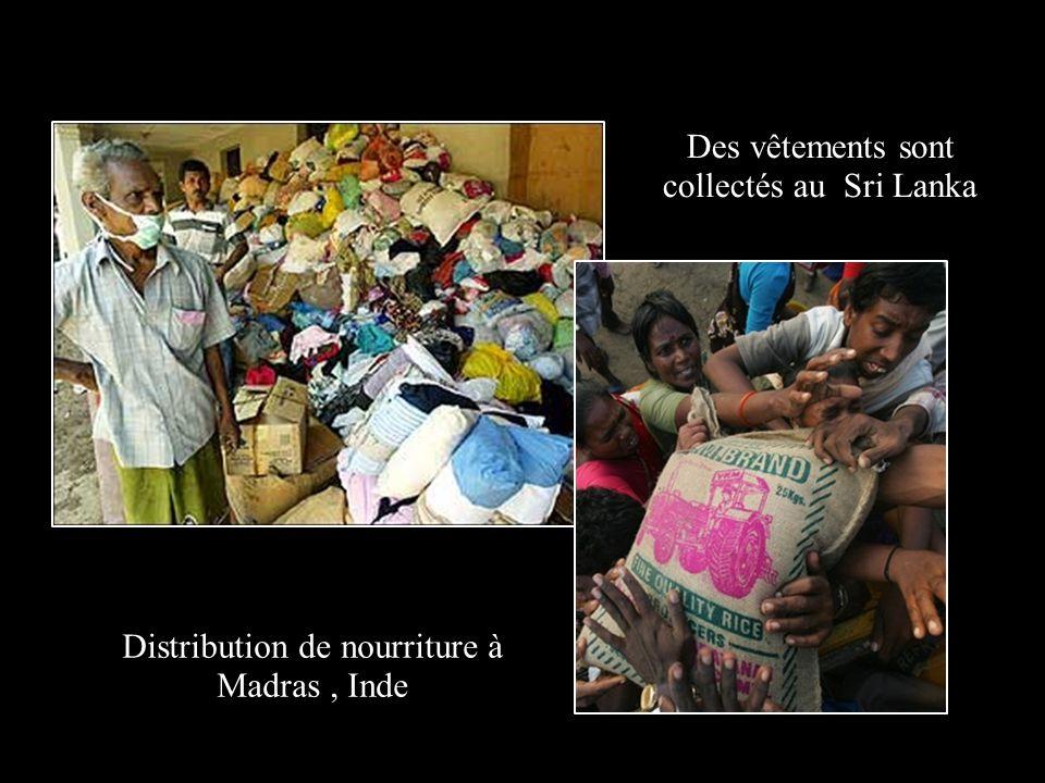 Des vêtements sont collectés au Sri Lanka Distribution de nourriture à Madras, Inde