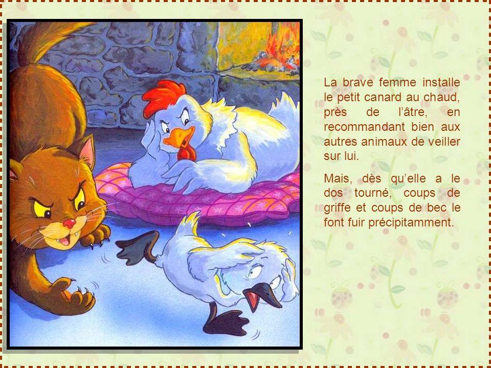 La brave femme installe le petit canard au chaud, près de lâtre, en recommandant bien aux autres animaux de veiller sur lui.
