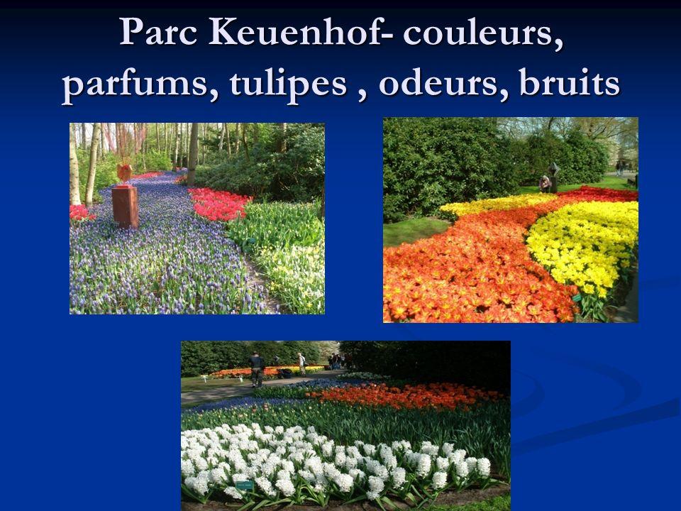 Parc Keuenhof- couleurs, parfums, tulipes, odeurs, bruits