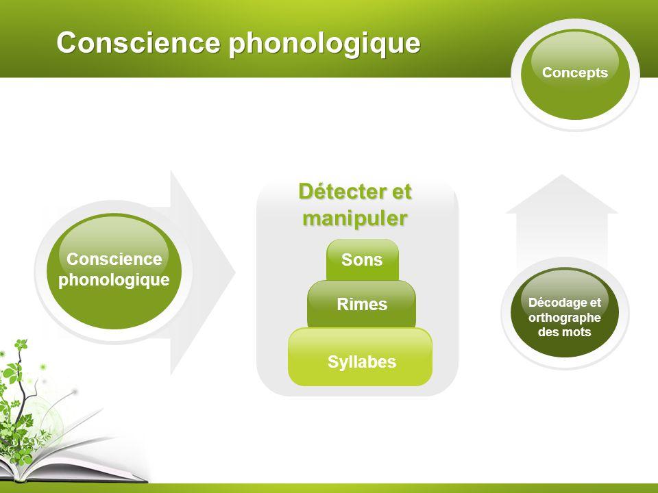 Conscience phonologique Concepts Conscience phonologique Détecter et manipuler Sons Rimes Syllabes Décodage et orthographe des mots