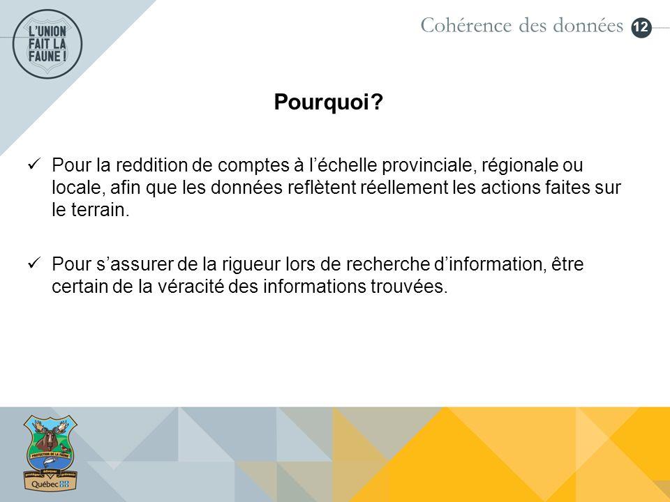 12 Pourquoi? Cohérence des données Pour la reddition de comptes à léchelle provinciale, régionale ou locale, afin que les données reflètent réellement