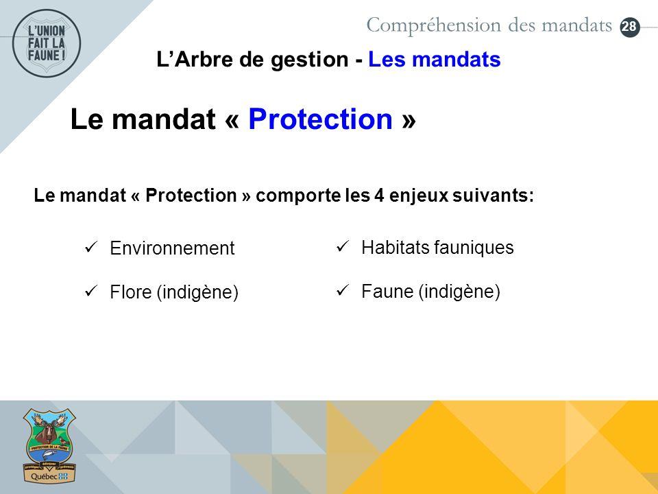 28 Le mandat « Protection » Environnement Flore (indigène) Compréhension des mandats LArbre de gestion - Les mandats Habitats fauniques Faune (indigèn
