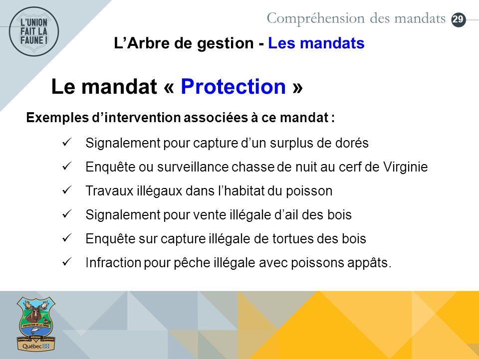 29 Le mandat « Protection » Exemples dintervention associées à ce mandat : Signalement pour capture dun surplus de dorés Enquête ou surveillance chass