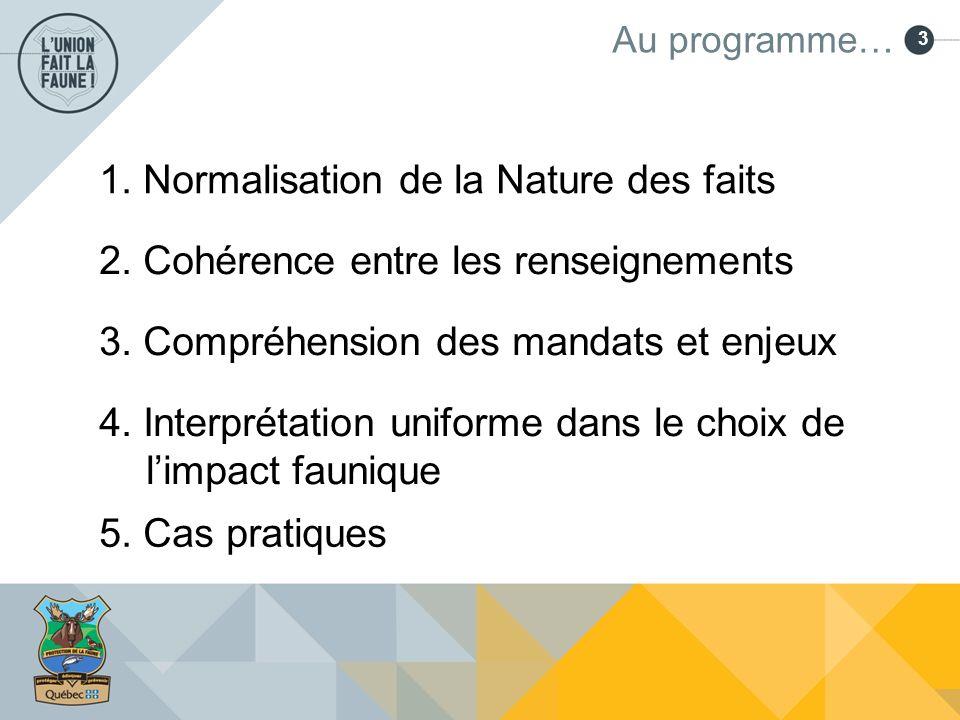 3 Au programme… 1. Normalisation de la Nature des faits 2. Cohérence entre les renseignements 3. Compréhension des mandats et enjeux 4. Interprétation
