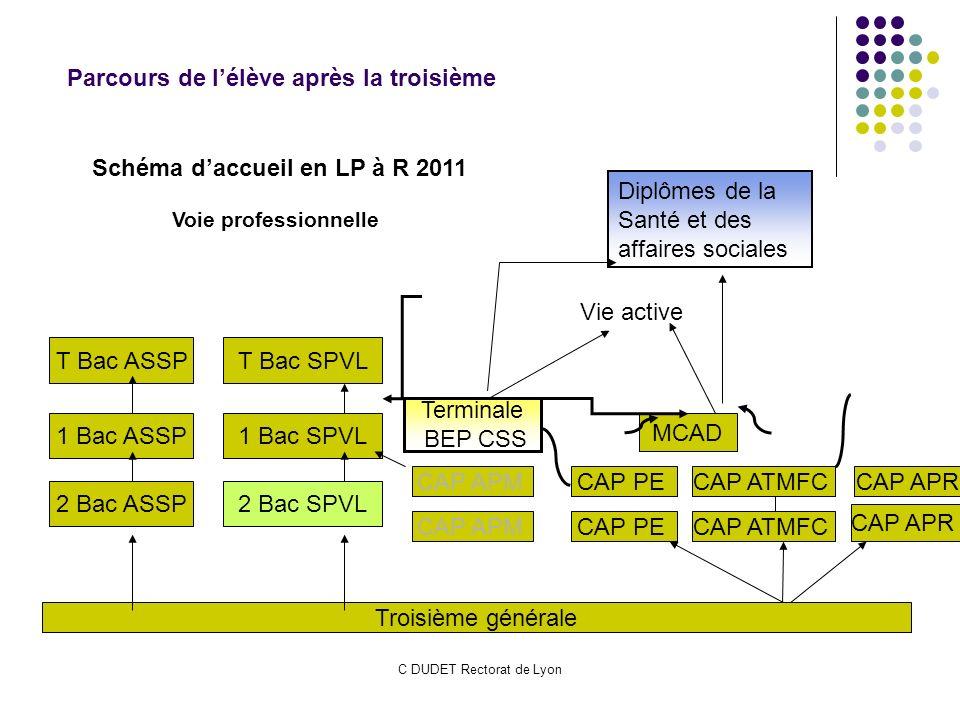 C DUDET Rectorat de Lyon Troisième générale MCAD Schéma daccueil en LP à R 2011 1 Bac SPVL 2 Bac SPVL T Bac SPVL 2 Bac ASSP 1 Bac ASSP T Bac ASSP CAP