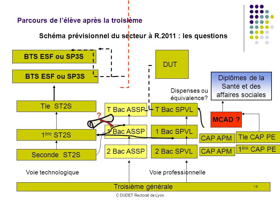 C DUDET Rectorat de Lyon Troisième générale Seconde ST2S 1 ère ST2S Voie technologiqueVoie professionnelle Tle ST2S BTS ESF ou SP3S Tle CAP PE 1 ère C
