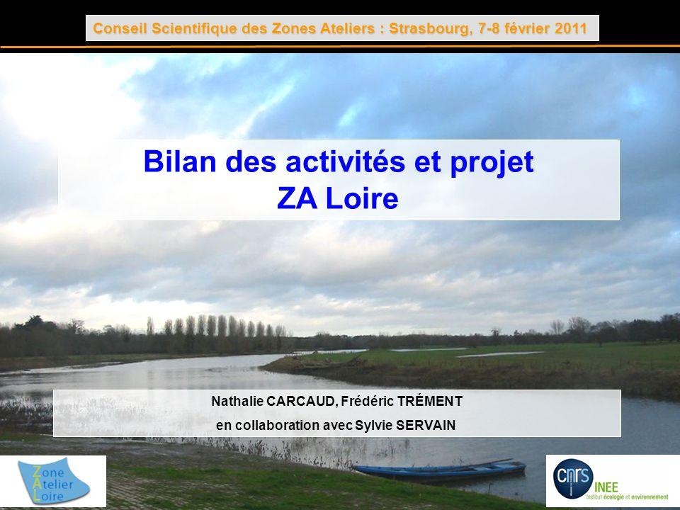 Conseil Scientifique des Zones Ateliers : Strasbourg, 7-8 février 2011 Bilan des activités et projet ZA Loire Nathalie CARCAUD, Frédéric TRÉMENT en co