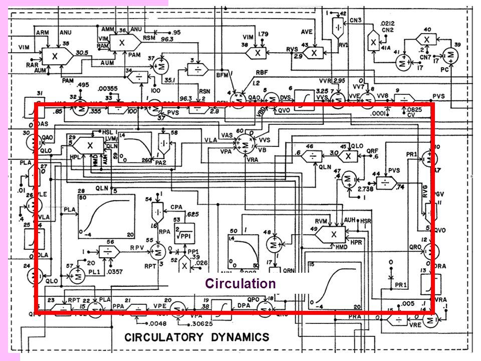 Structure du modèle Circulation