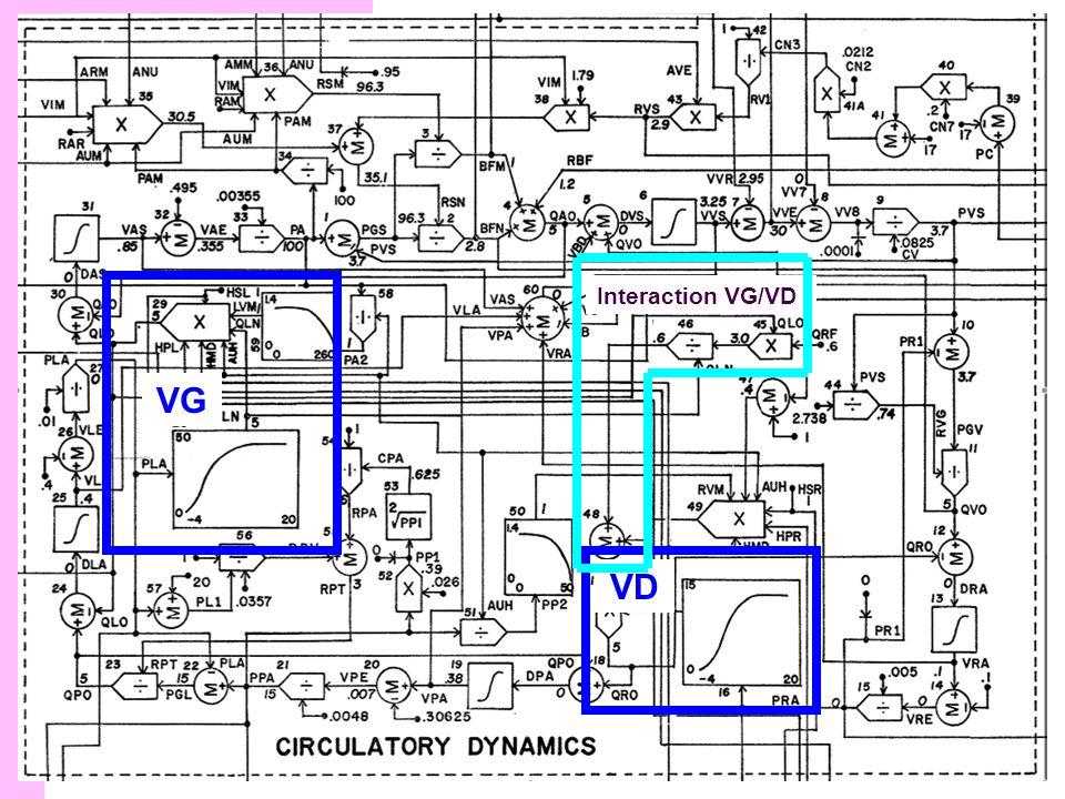 Structure du modèle VG VD Interaction VG/VD