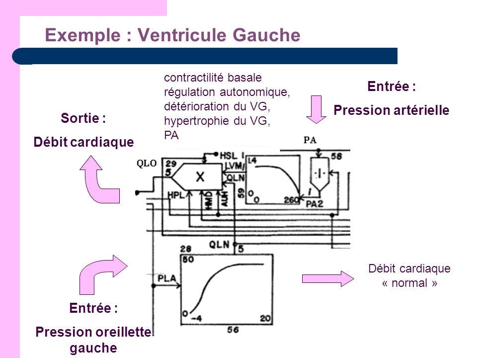 Exemple : Ventricule Gauche Entrée : Pression oreillette gauche Débit cardiaque « normal » Entrée : Pression artérielle contractilité basale régulatio