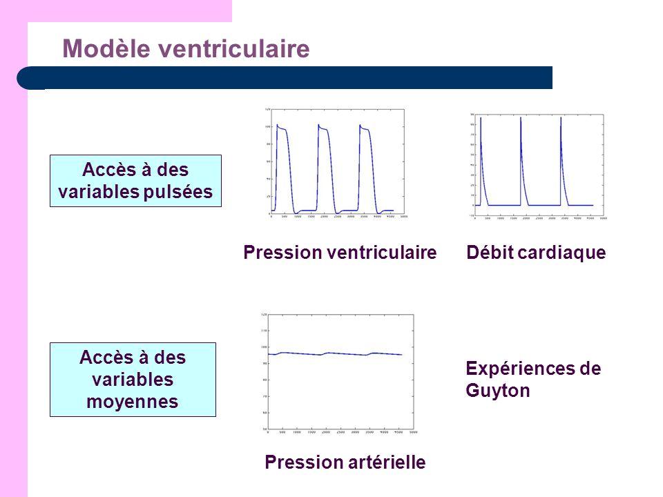 Modèle ventriculaire Accès à des variables pulsées Débit cardiaquePression ventriculaire Accès à des variables moyennes Pression artérielle Expérience