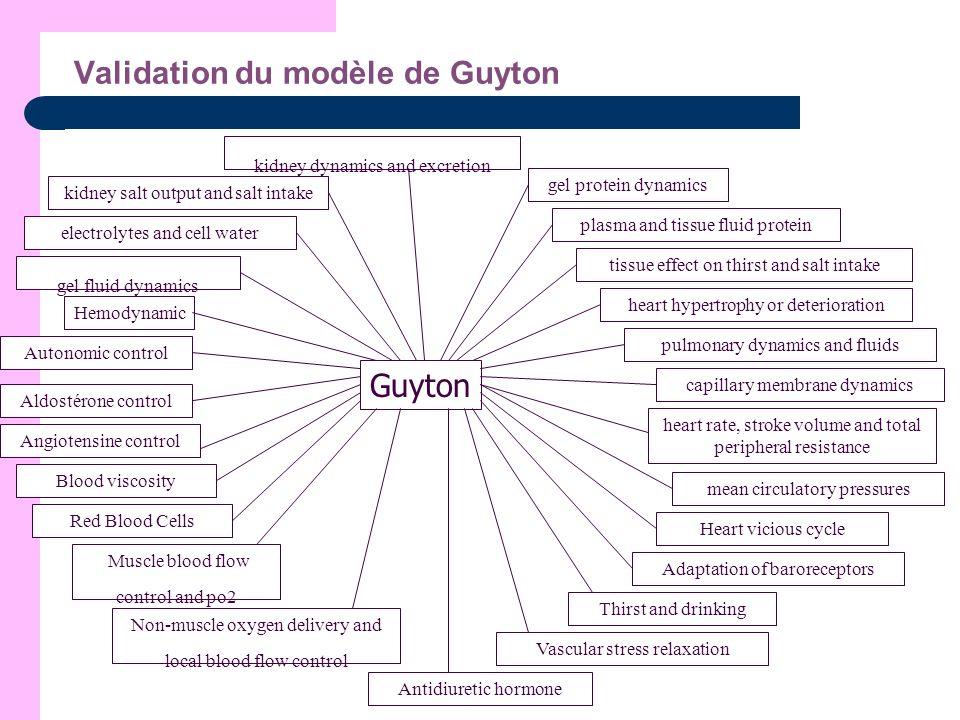 Validation du modèle de Guyton Guyton Hemodynamic Autonomic control Aldostérone control Angiotensine control Blood viscosity Red Blood Cells Muscle bl