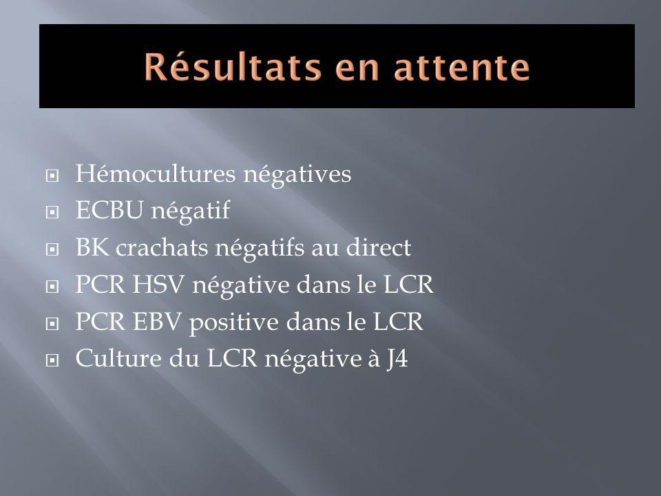 Hémocultures négatives ECBU négatif BK crachats négatifs au direct PCR HSV négative dans le LCR PCR EBV positive dans le LCR Culture du LCR négative à