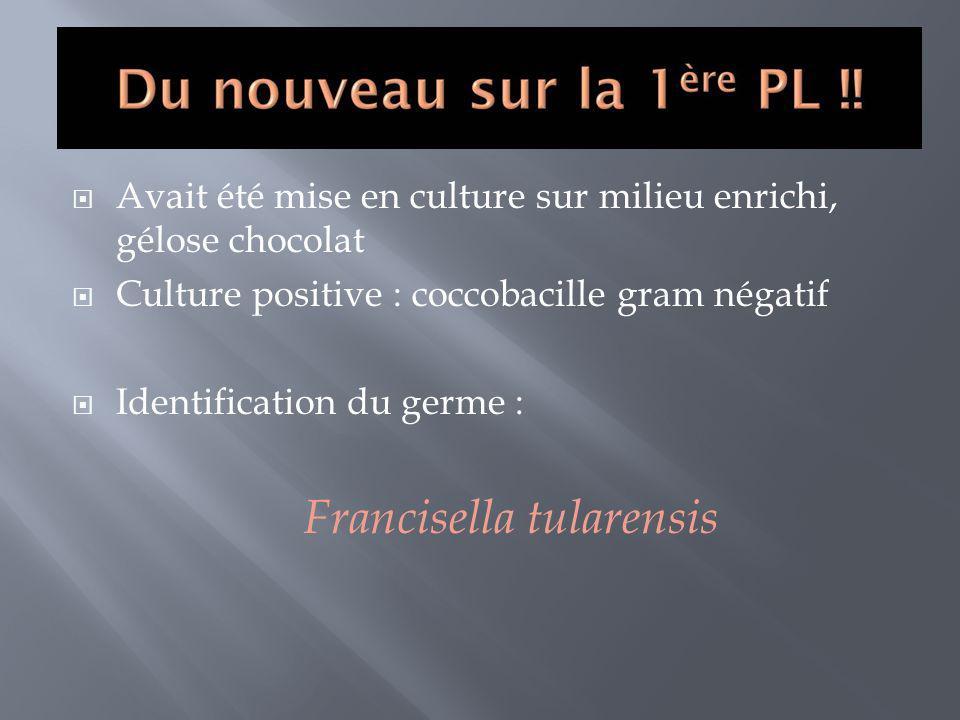 Avait été mise en culture sur milieu enrichi, gélose chocolat Culture positive : coccobacille gram négatif Identification du germe : Francisella tular