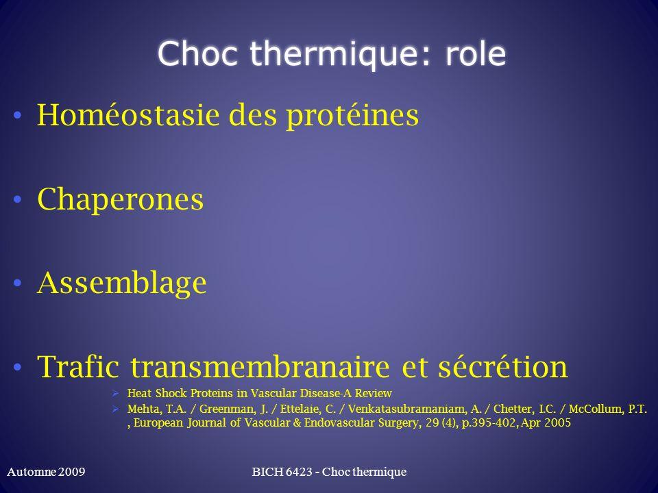 Choc thermique: protéines Nombreuses protéines Une bonne douzaine Classée selon PM Hsp 27, Hsp32, Hsp 60, Hsp 70, Hsp90, Hsp110 Familles de protéines Similaires à des protéines « normales » ayant des fonctions similaires Protéines « cognate » Hsc BICH 6423 - Choc thermiqueAutomne 2009