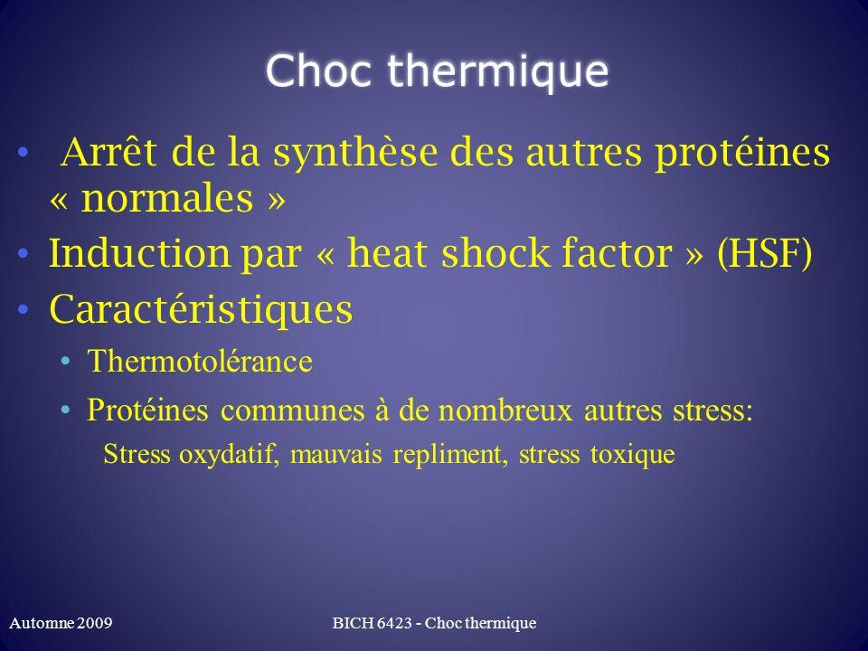 Choc thermique: thermotolérance Cellules ayant survécu à un premier choc thermique requierrent un choc plus fort (T° plus élevée que le premier choc) BICH 6423 - Choc thermiqueAutomne 2009