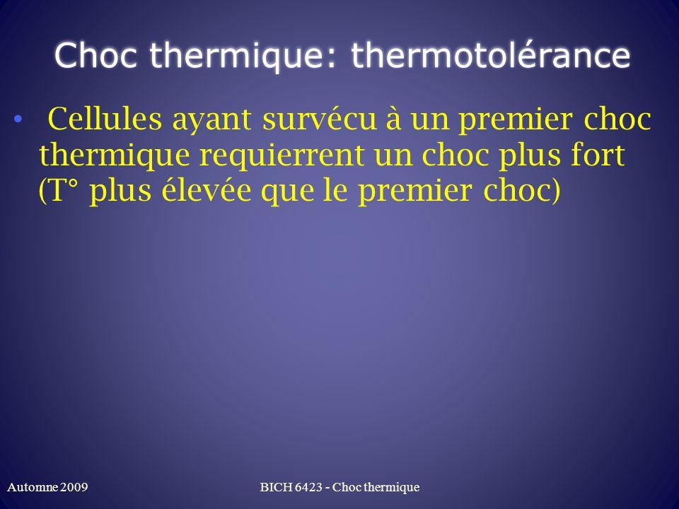 Choc thermique vs autres stress Protéines communes à de nombreux autres stress: Stress oxydatif Déficience nutritionnelle Radiation UV Ischémie stress du RE (mauvais repliement) stress toxique Différentes pathologies BICH 6423 - Choc thermiqueAutomne 2009