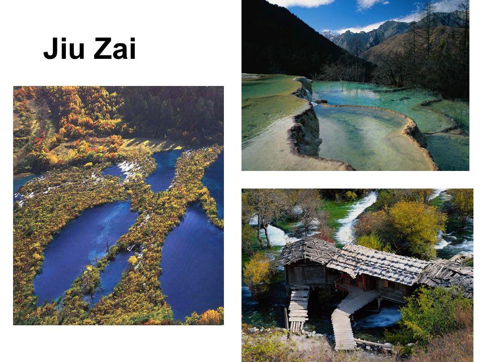 Jiu Zai