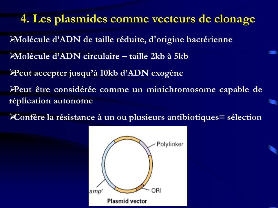 4. Les plasmides comme vecteurs de clonage Molécule dADN de taille réduite, d'origine bactérienne Molécule dADN circulaire – taille 2kb à 5kb Peut acc